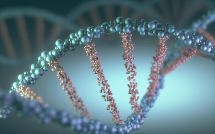 El procedimiento del test genético para el paciente es muy sencillo ya que se hace generalmente con una simple analítica en sangre, otras veces con muestras de células de piel o saliva.