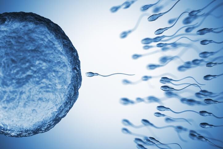 La fertilización in vitro es el procedimiento más sofisticado de inseminación artificial y se indica cuando ha habido fracasos con otros tratamientos.