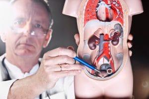 análisis de sangre de próstata de costillas